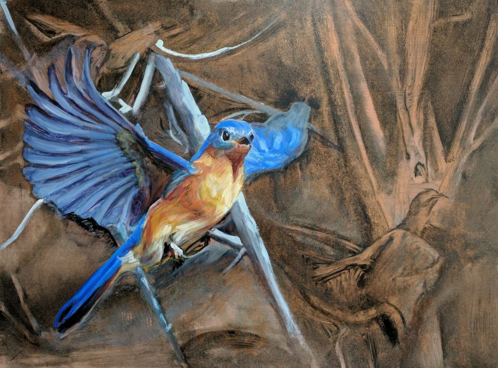 Copper Bluebird 18 x 24 oil on copper