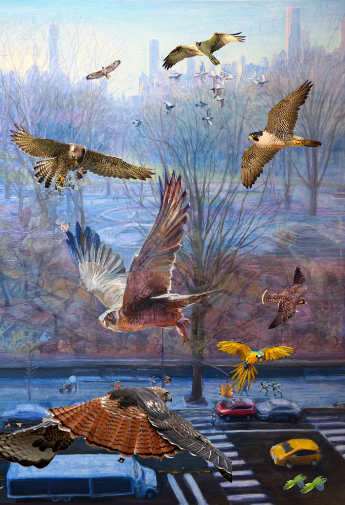 More Birds Park digital print